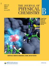 Charge Transfer at the Qo‑Site of the Cytochrome bc1 Complex Leads to Superoxide Production. Adrian Bøgh Salo, Peter Husen, Ilia A. Solov'yov. J. Phys. Chem. B, 121: 1771−1782, 2017.